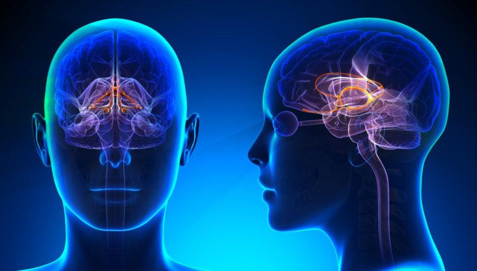 Balancing Your Brain Chemistry: Treating Neurotransmitter Imbalances
