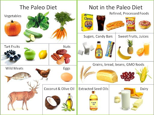 Image result for paleo diet