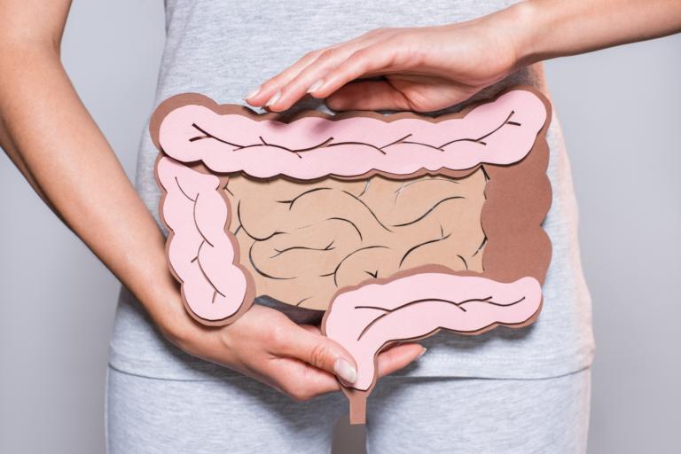 sibo-intestine