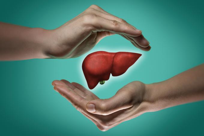 detoxing the liver
